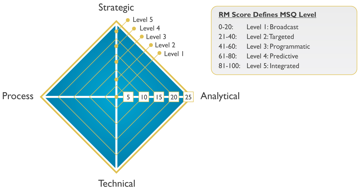 MSQ Model